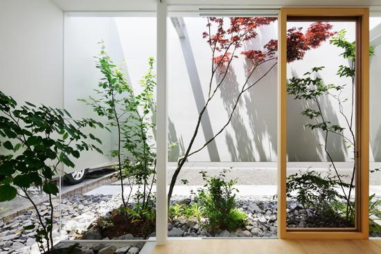 Дом в гармонии с природой