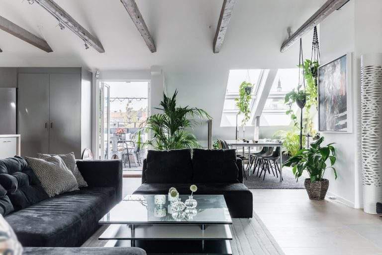 Современные мансардные апартаменты